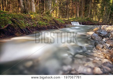 Long exposure stream in forest in Mala Fatra mountains Slovakia