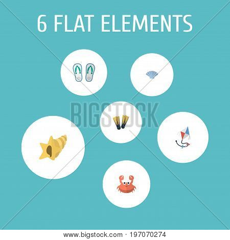 Flat Icons Swimming, Conch, Fly And Other Vector Elements