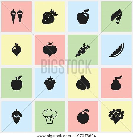 Set Of 16 Editable Fruits Icons. Includes Symbols Such As Sugar Basin, Soybean, Honeycrisp And More