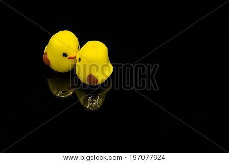 Two yellow miniature chicks kissing and bonding mirrored image on black background.