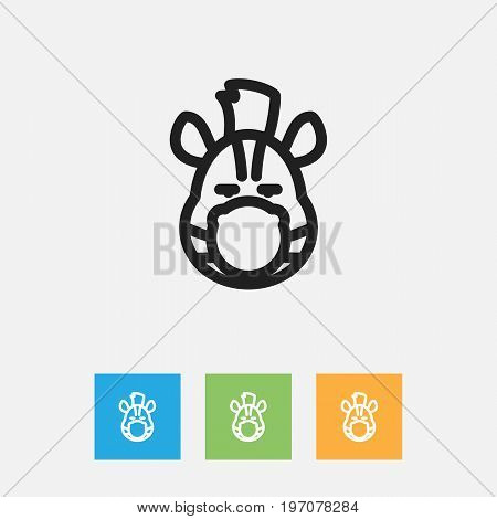 Vector Illustration Of Zoology Symbol On Zebra Outline