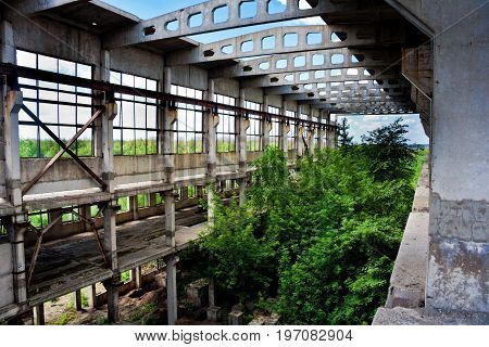 Abandoned overgrown ruins of industrial building, green post-apocalypse concept, Voronezh Region, Russia