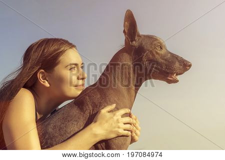 Cheerful pretty young girl sitting and hugging her dog xoloitzcuintli at the blue sky at sunset