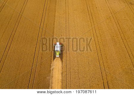 Aerial view of combine harvester agricultural machinery harvesting wheat crops in cultivated field