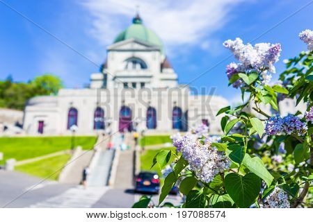 Montreal, Canada - May 28, 2017: St Joseph's Oratory On Mont Royal With Light Purple Lilac Flowers I