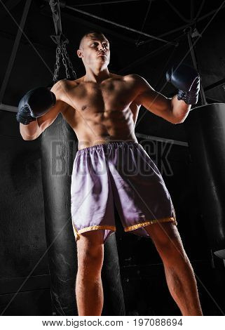 The Professional Boxer Stands In The Fighting Stance