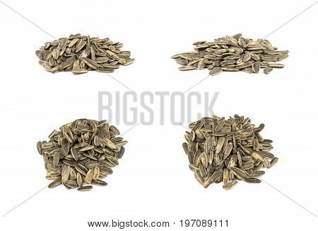 Collection of black sunflower seeds isolated on white,