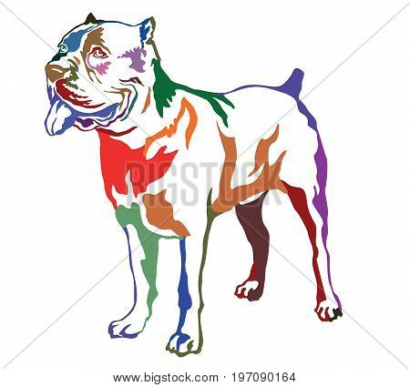 Decorative contour portrait of standing in profile dog Cane corso italiano colorful vector isolated illustration on white background