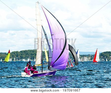 Children Sailing in High School Sailing Championships. Belmont Lake Macquarie New South Wales Australia. sail sailing children children sailing high school children child sailors water water sport lake competing competition championships yacht racing yach