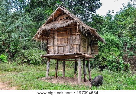Hut In The Countryside In Luang Nam Tha, Laos