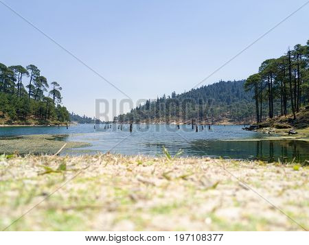 View to the lake - natural background