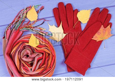 Autumnal Leaves With Gloves And Shawl For Woman, Womanly Clothing For Autumn Or Winter