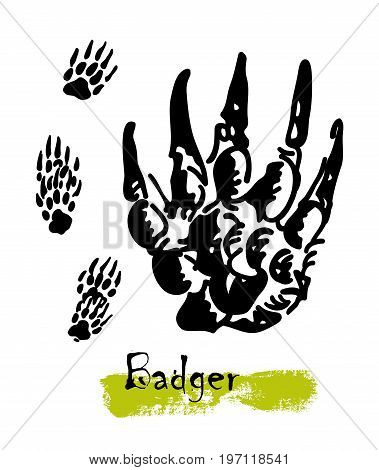 Wildlife animals. Traces of a badger. Footprints of variety of animals, illustration of black silhouette footprints. Vector illustration