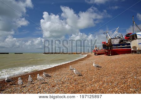 Beach launched fishing boats with a beautiful sky and seagulls in the foreground, Hastings, UK