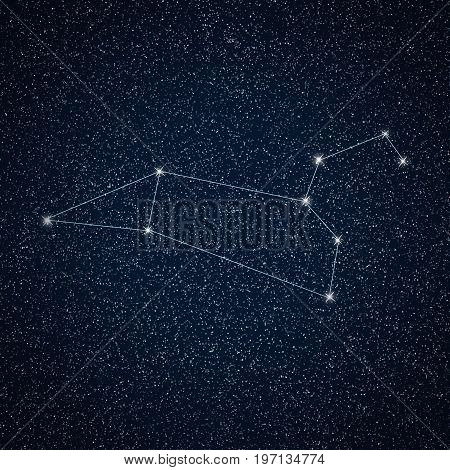 Leo constellation in night sky. Constellation Leo