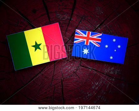 Senegal Flag With Australian Flag On A Tree Stump Isolated