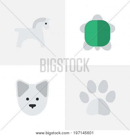 Elements Tortoise, Foot, Steed And Other Synonyms Footprint, Pet And Paw.  Vector Illustration Set Of Simple Wild Icons.
