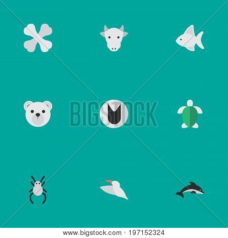 Elements Skeleton, Turtle, Tomcat And Other Synonyms Cow, Bird And Panda.  Vector Illustration Set Of Simple Animals Icons.
