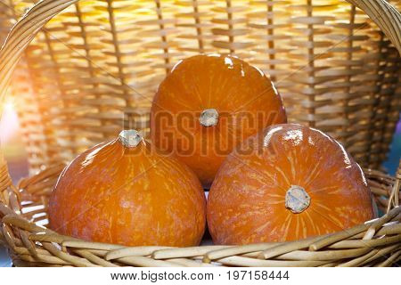 three pumpkins in a wicker basket .