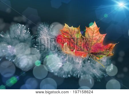 Beautiful yellow red green autumn maple leaf on a Christmas garland of tinsel with a nice blurred bokeh and soft blue background.