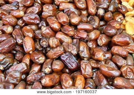 Dates Is The Edible Fruit Of Some Species Of Date Palm