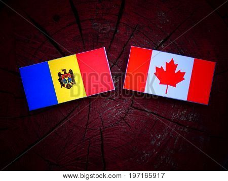 Moldovan Flag With Canadian Flag On A Tree Stump Isolated