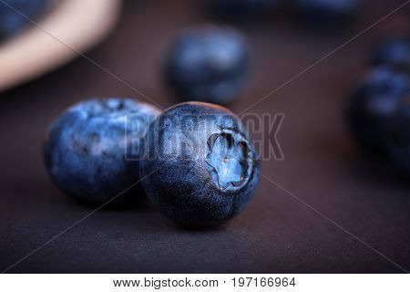 Two forest berries bilberry on a dark blurred background, close-up. Whole, organic and juicy blueberries. Summer harvest of blueberries. Fresh and ripe blueberry.
