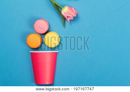 Colorful Macaroons Falling Into Red Paper Cup. Minimal Concept. Appetizing Macaroons And Pink Tulip