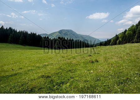 mountain meadow with forest around on Zaskovske sedlo with Ostre mountain ridge on the background and blue sky with clouds in spring Velka Fatra mountains in Slovakia