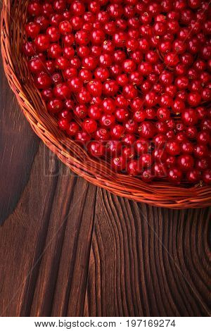 Top view of a brown wooden crate with red currant on a dark brown background. Bright red currant full of nutritious vitamins. Close-up of ripe and fresh currants. Organic berries in a wooden crate.
