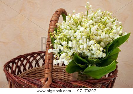 Beautiful bouquet of lilies of the vales in a basket