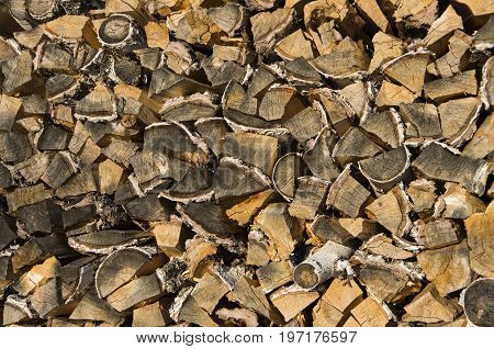 birch firewood in a woodpile in the village