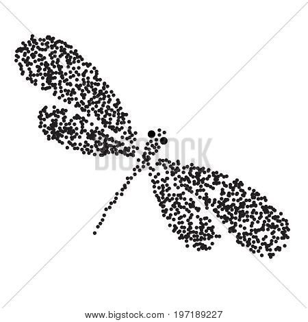 Vector Dragon-fly Silhouette. Cartoon Graphic Illustration Of Damselfly Isolated With Black And Whit