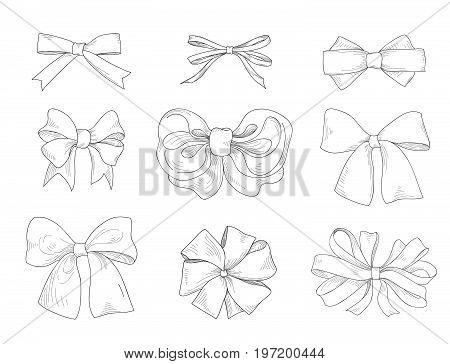 Bow hand drawn collection. Fashion accessory sign. Gentle bow ribbon isolated sketch set.