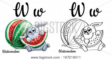 Vector alphabet letter W for children education with funny cartoon watermelon and bunny. Isolated. Learn to read. Coloring page.