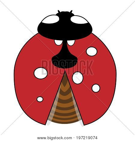 Lady-bird or ladybug isolated on light white background. Red insect. Vector illustration