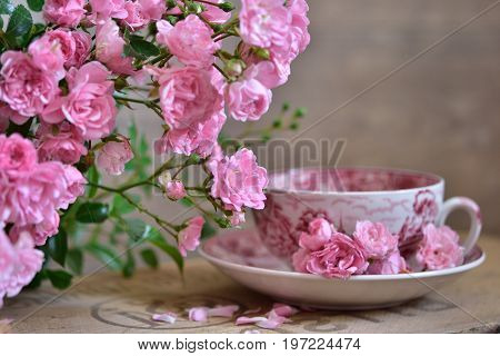 Small pink roses, closeup blurred teacup with pink flowers standing on a box of Wood