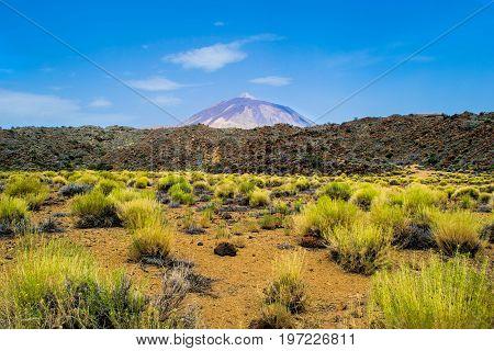 Volcano Teide in Tenerife, Canary islands, Spain