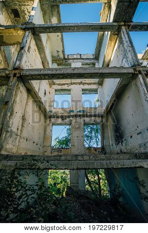 Overgrown ruins of house or industrial building, green post-apocalypse concept