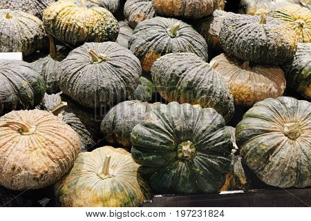 More green and yellow pumpkins for sale at the Thai night farmers market. A lot of pumpkin. Selective focus