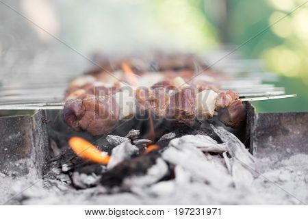 A barbecue on the grill . A photo