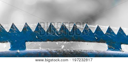 a weathered blue zigzag top of a fence covered by a cobweb isolated from the bright background