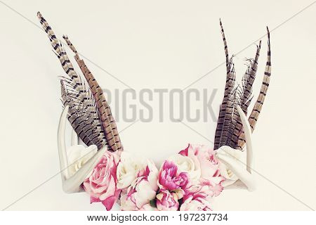 Silver deer antlers decorated in flowers and pheasant feathers. Copy space