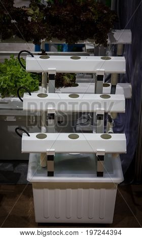 Home vertical hydroponic gardening system for vegetable