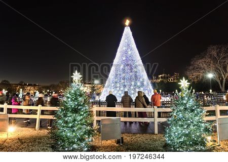 Washington Dc, Usa - December 29, 2016: National Mall Christmas Tree With Visitors During Sunset Ill