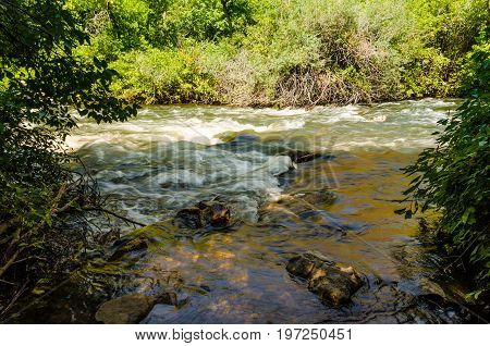 Little Cottonwood Creek River In Utah's Wasatch Range