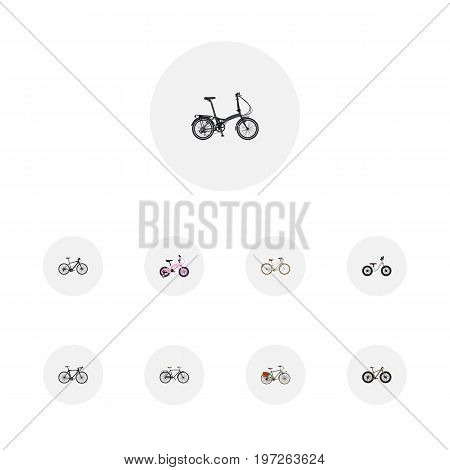 Realistic Fashionable, Equilibrium, Exercise Riding And Other Vector Elements
