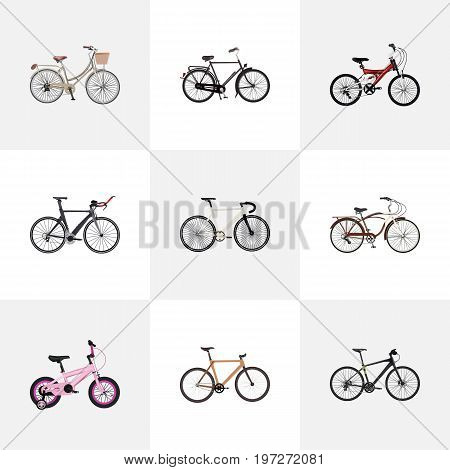 Realistic Hybrid Velocipede, Training Vehicle, Journey Bike And Other Vector Elements
