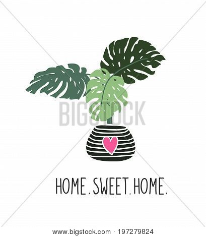 Hand drawn tropical house plants. Scandinavian style illustration modern and elegant home decor. Vector print design with lettering - ' home sweet home '.