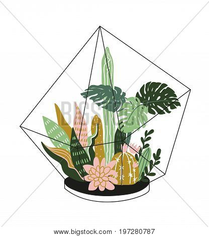 Hand drawn contained tropical house plants. Scandinavian style illustration modern and elegant home decor. Vector print design with terrarium with tropical plants.